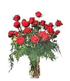 2 Dz Large Red Roses