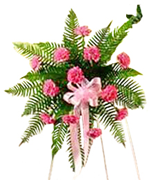 Pink Carnation Standing Funeral Spray