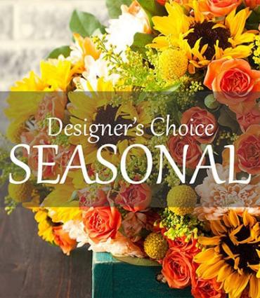 Autumn Designers Choice